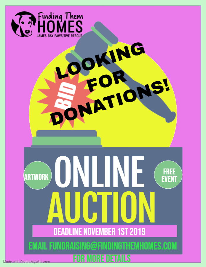 Looking for Donations for FTH Annual Online Auction