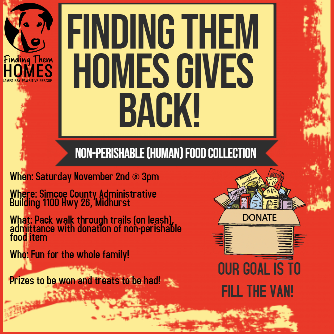 Finding Them Homes Gives Back!