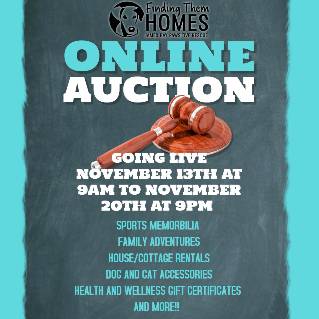 FTH Annual Online Auction