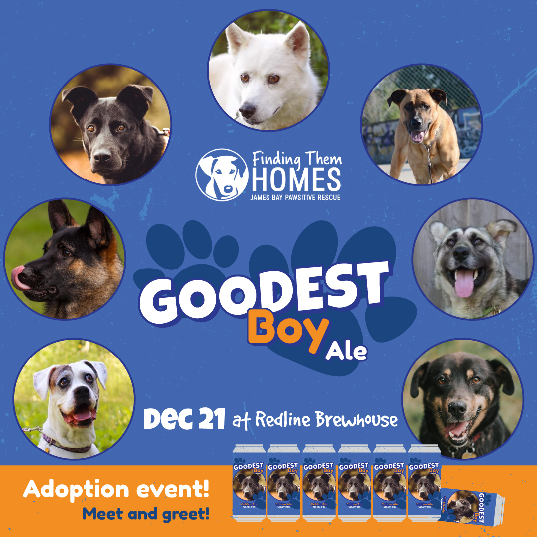 Redline Brewhouse Goodest Boy Launch and Adoption Event