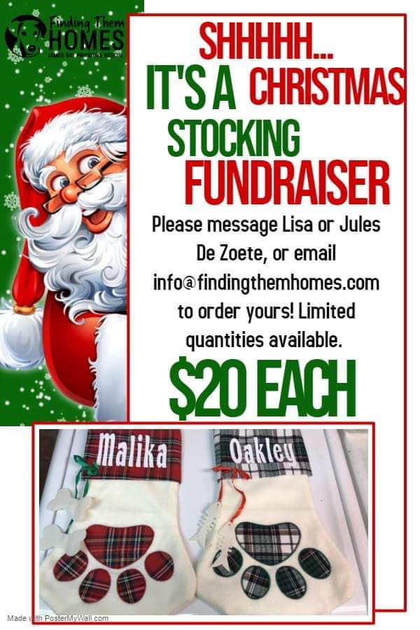 Personalized Stocking Fundraiser!